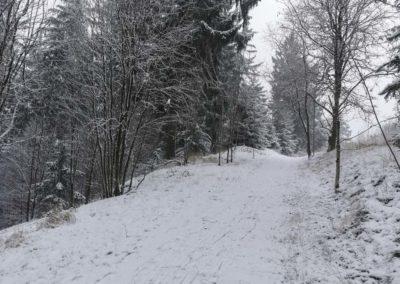FeWo-Harz-Altenau-Winter-Schnee_0003
