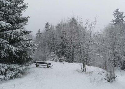 FeWo-Harz-Altenau-Winter-Schnee_0006